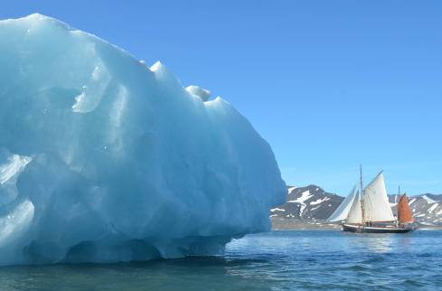 Premiers icebergs