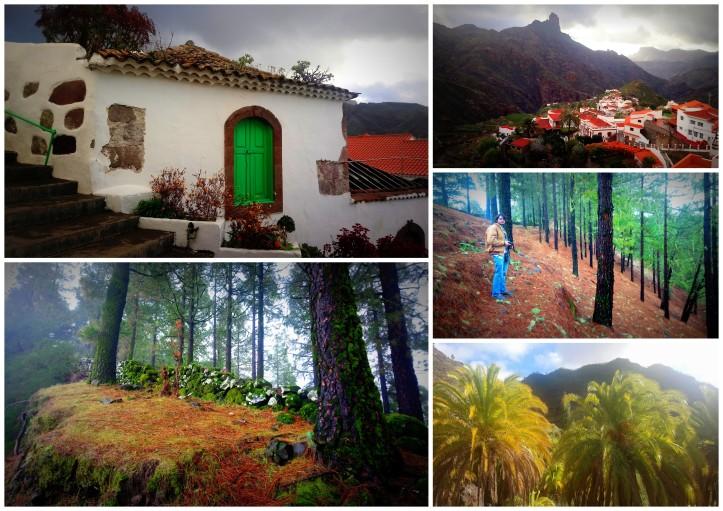 Gran Cana - Gomera, Tenerife1